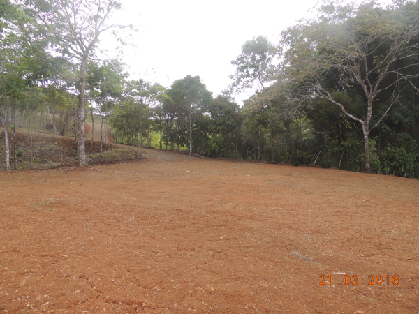 secluded building site on lot 2