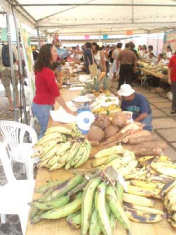 Costa Rica Food Market